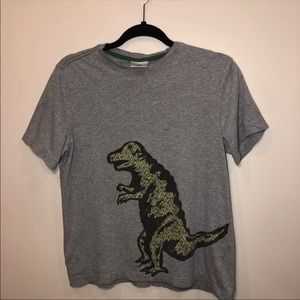 🍒 Hanna Andersson Boy's Dinosaur T-Shirt 160